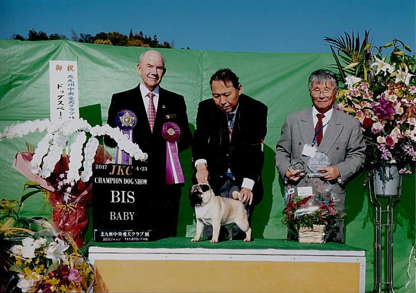 北九州中央愛犬クラブ